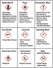 Figure 1 – Pictograms for use under the Globally Harmonized System for Hazard Communication.